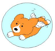 スピリチュアル犬